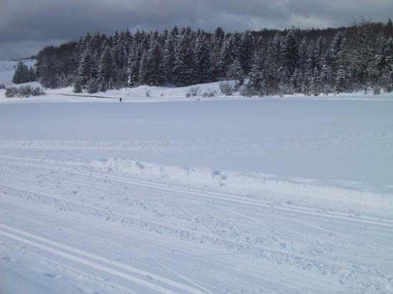 L'hiver, dans une nature encore sauvage..devant le gîte