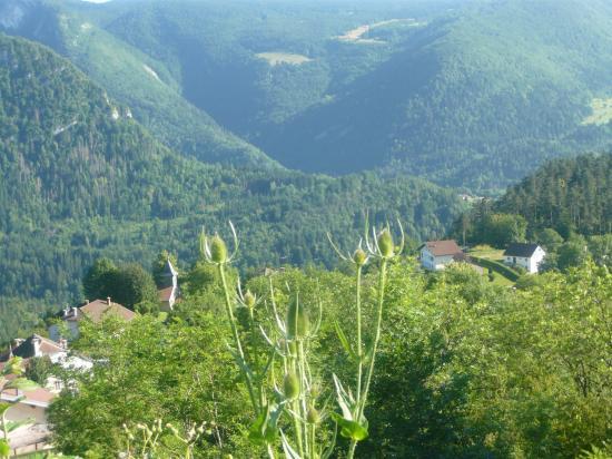 Paysage du Haut-Jura